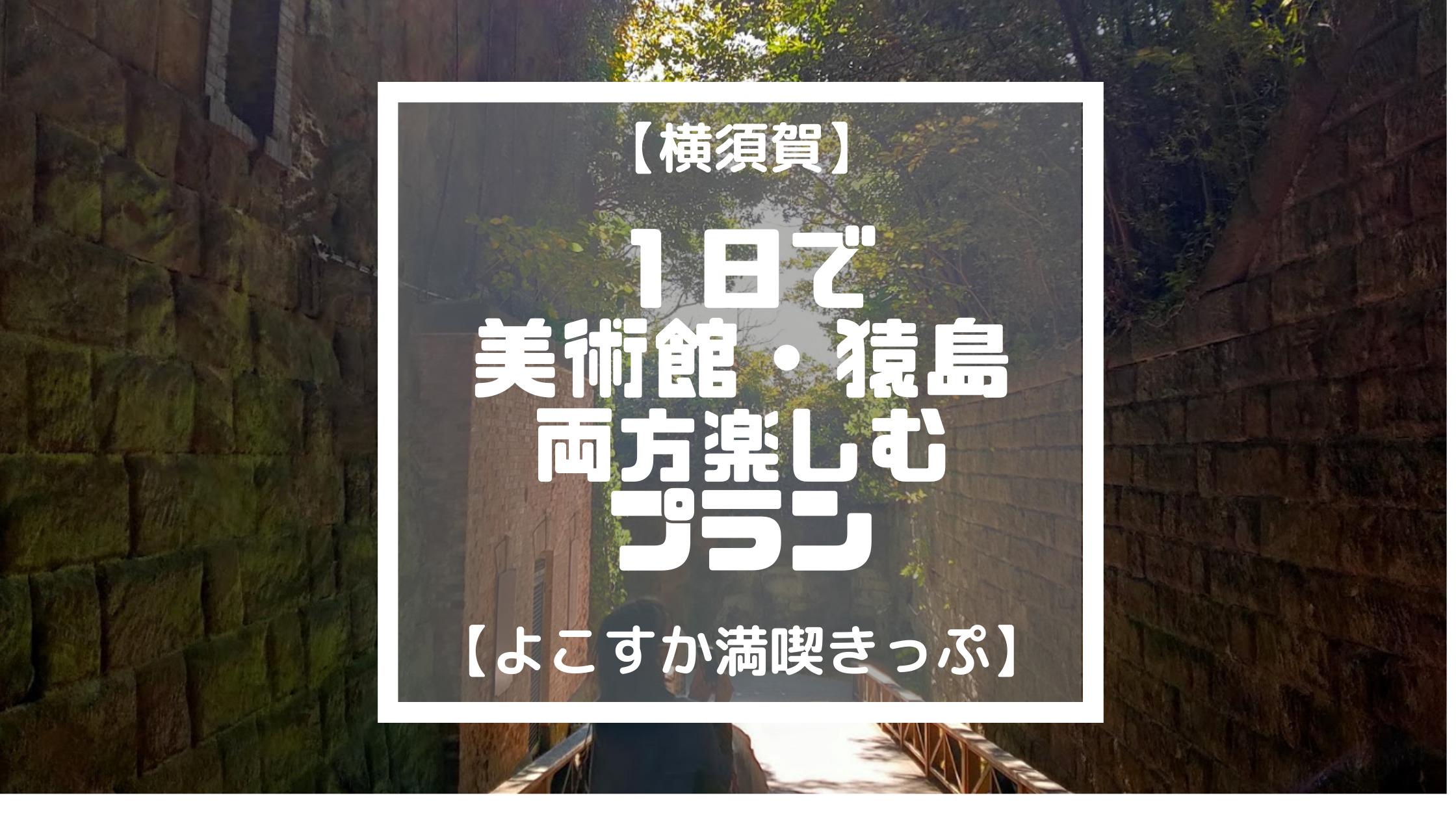 【横須賀】1日で 美術館・猿島 両方楽しむ プラン【よこすか満喫きっぷ】